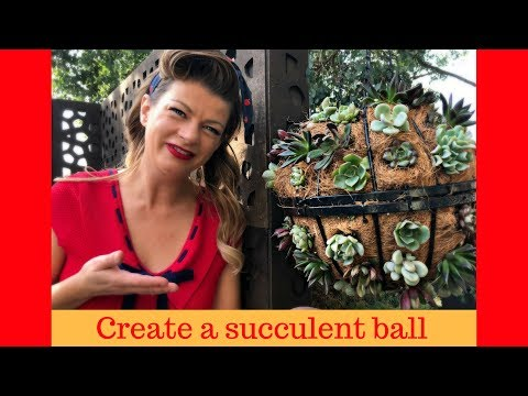 How to create a Succulent Ball // The Gardenettes