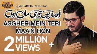 Nohay 2018 | Asghar ع Main Teri Maa Hun | Mir Hasan Mir Noha 2018 | Babul Hawaij | Nohay 2019
