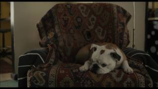 Paterson - Love Poem - Own it on Digital HD 3/21 on Blu-ray/DVD 4/4