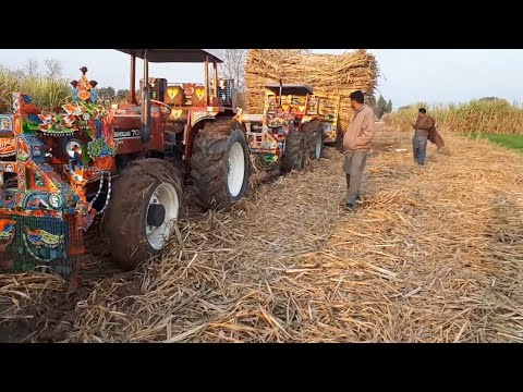 5 [Five] Tractor Pulling Heavy Stucked Suagrcane Trolley With NH 7056 4WD Massey 385 4WD