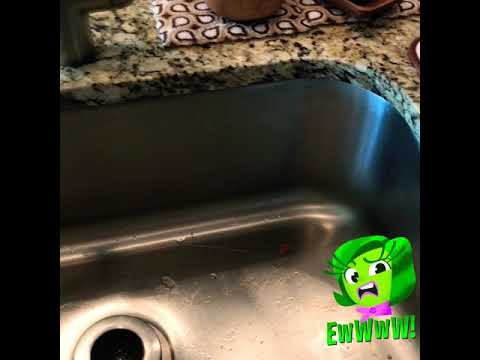 Cleaning your Sink with Lime/ Lemon and Baking Soda
