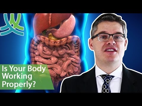 How To Have A Healthy Digestive System