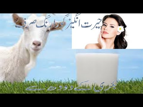 skin whitening and glowing with goat milk/gora rung krny ka garelo tareka