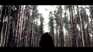 Robot Koch -  Glassdrops feat. John LaMonica  (Official Video)