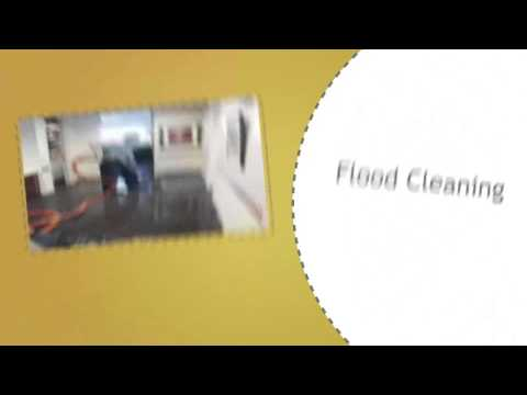 San Diego's Finest Carpet Cleaning