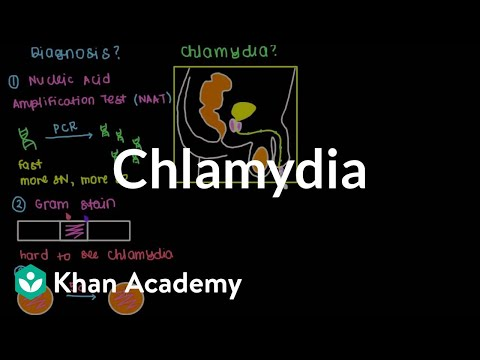 Diagnosis, treatment, and prevention of chlamydia | Infectious diseases | NCLEX-RN | Khan Academy
