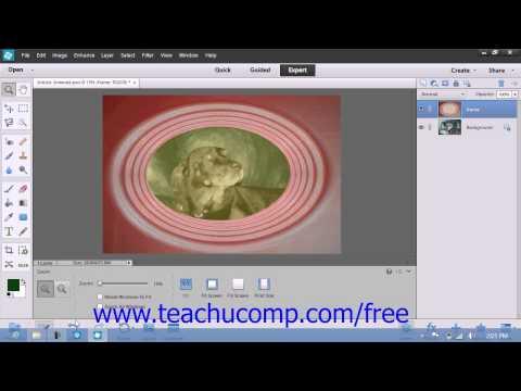 Photoshop Elements 12 Tutorial Merging & Flattening Layers Adobe Training Lesson 10.8