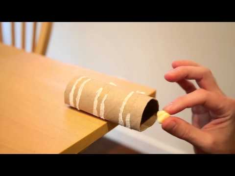 Make a No Kill Mouse Trap with a Toilet Paper Roll