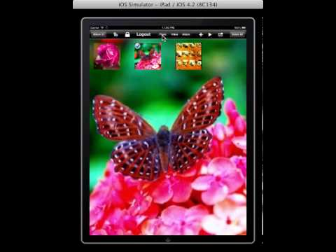 How to change background image in PhotoOrg iPad