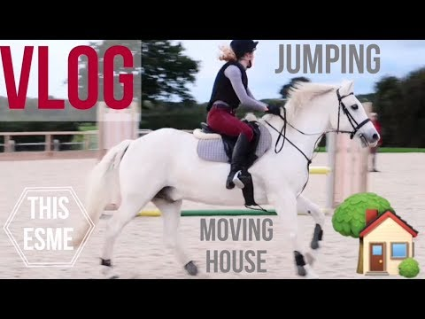 Vlog | Showjumping and Moving House | This Esme