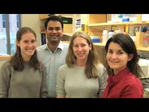 Sample Processing - EDRN protocol - Whitcomb Lab