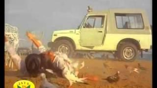 Mallu Big Boobed Suchitra Hot & Rare Cleavage     YouTube