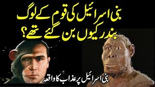 Bani Israel  Ki Qaum Bandar Ban Gaye urdu stories | islamic stories