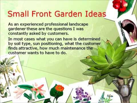 Small Front Garden Ideas And Designs