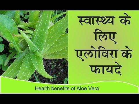 स्वास्थ्य के लिए एलोविरा के फ़ायदे | Health Benefits of Aloe Vera for Weight Loss, Cancer & Diabetes