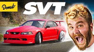 SVT - Everything You Need to Know | Up To Speed