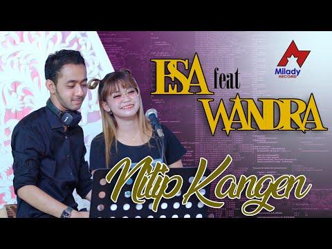Download Lagu Esa Risty Nitip Kangen Feat. Wandra Mp3