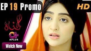 Gunnah - Episode 19 Promo | Aplus Dramas | Sara Elahi, Shamoon Abbasi, Asad Malik | Pakistani Drama