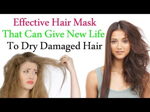 Hair Mask for Hair Growth | Effective Hair Mask That Can Give New Life to Dry Damaged Hair