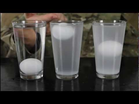 Float an Egg in the Middle of Salt Water - Water Density Science Experiment