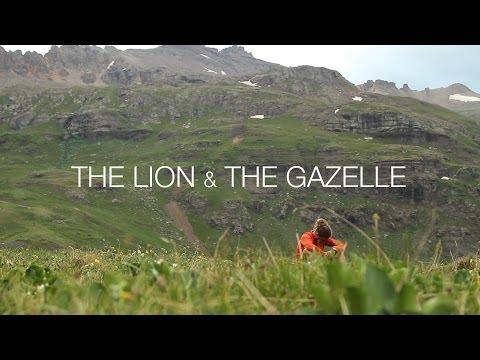 The Lion & The Gazelle