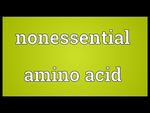 Nonessential amino acid Meaning