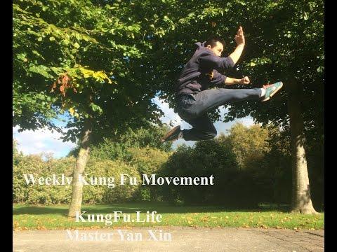 Shaolin Combination Kicks -Flick Kick & Jumping Kick (Cai Jiao & Er Ti Jiao)