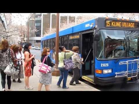 CAPITAL AREA TRANSIT Bus Harrisburg Pa.