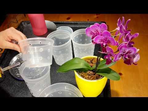 재활용 플라스틱 투명용기에 구멍 뚫기 (Making  holes in a clear plastic container)