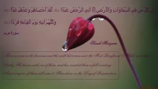 قران كريم بصوت جميل جداااا Koran karim الشيخ هزاع البلوشي