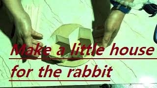 Make a little house for the rabbit