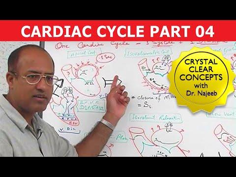 Cardiac Cycle - Systole & Diastole - Part 4/8