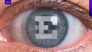 Testing the limits of human vision