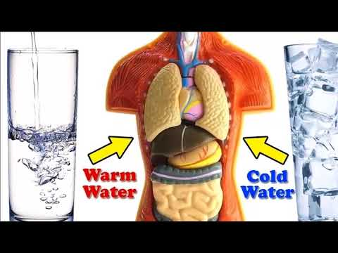 Cold Water vs Warm Water – Which One's Good for Your Health؟