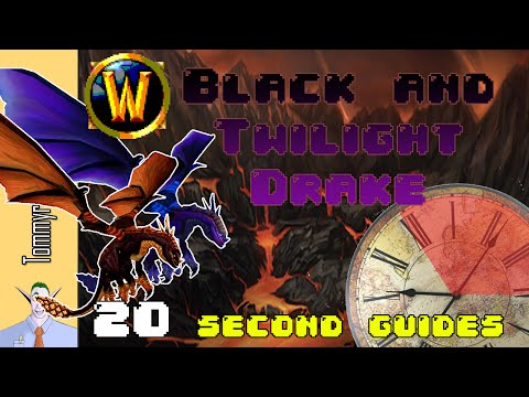 [WoW] 20 Second Guides: How to get the Black/Twilight Drake mounts