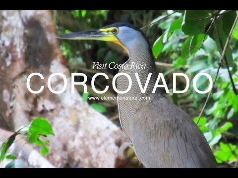 Parque Nacional Corcovado y Golfo Dulce