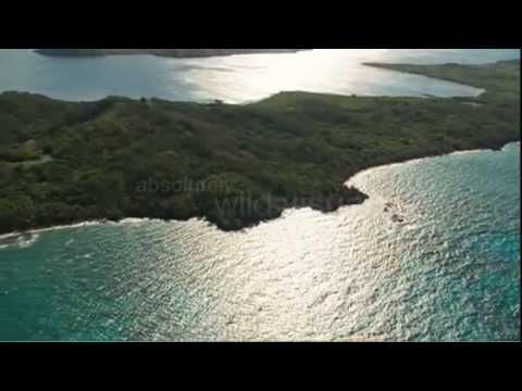 Around the World: Turtle Island, Fiji
