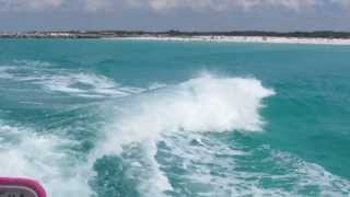 Dolphin Jumping Waves