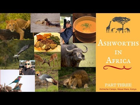 African Safari: Top Chef Challenge in Masai Mara, The Final Part of Our Trip