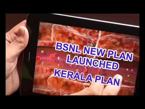BSNL NEW KERALA PLAN 446 -84 days(333,339,349,395)