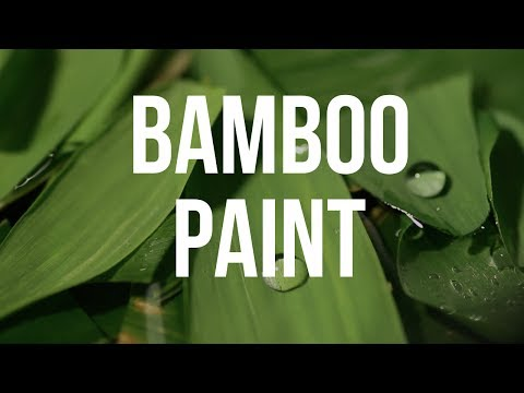Making a Dye, Pigment & Paint out of Bamboo