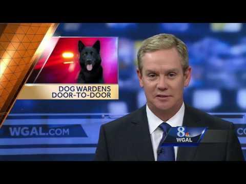 Dog wardens going door-to-door for pet license checks
