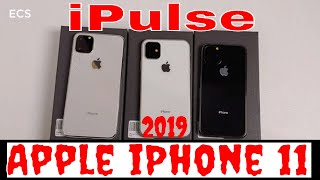 Apple iPhone 11, iPhone 11R & iPhone 11 Max 2019 iPulse Cases | Protect Your Investment