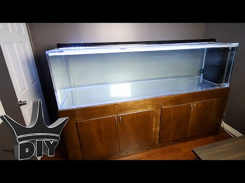 AWESOME NEW AQUARIUM BUILD!!