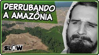 AMAZÔNIA, VAMOS DERRUBAR?! | Canal do Slow