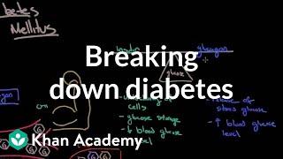 Breaking down diabetes   Endocrine system diseases   NCLEX-RN   Khan Academy