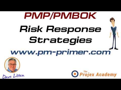 pmp pmbok risk response strategies