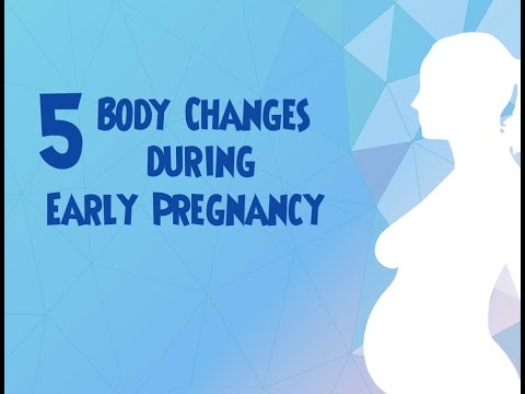 5 Body Changes During Early Pregnancy