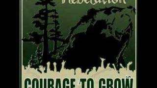 Download Rebelution - Nightcrawler Video