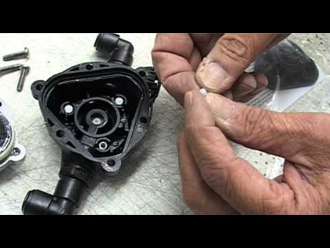 Replacing the Check Valve